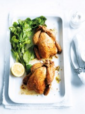 roast spatchcock with pistachio couscous stuffing