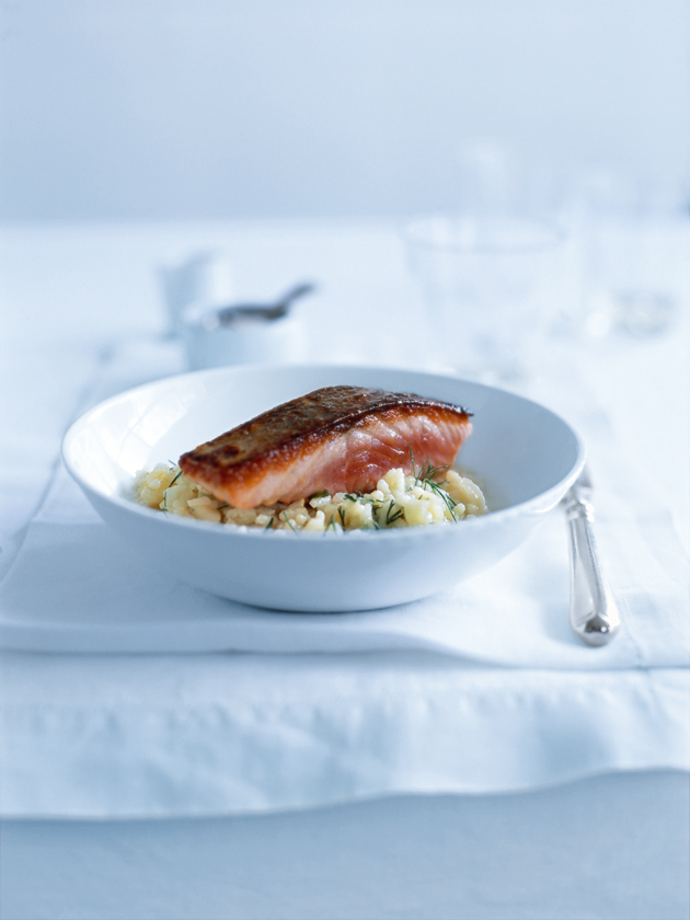 salmon with fennel and lemon risotto