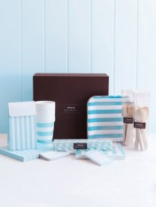 complete party ware hamper - blue stripes
