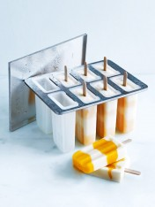 Popsicle Mould - includes 16 popsicle sticks